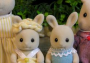Butterglove Rabbit Family