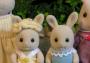 Butterglove Rabbit Family