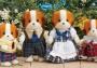 Doughty Dog Family