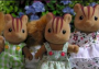 Furbanks Squirrel Family