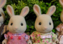Periwinkle Rabbit Family