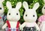 Snow-Warren Rabbit Family