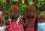 Wildwood Rabbit Family