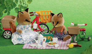 Bikes &amp; Picnic Set