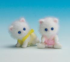 Persis Persian Cat Twins
